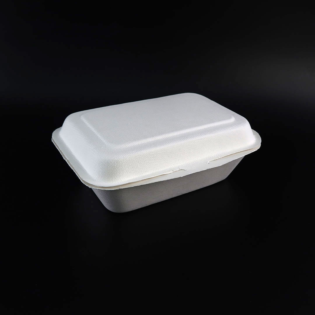 B001—7×5-inch-Bagasse-Hinged-Container-1
