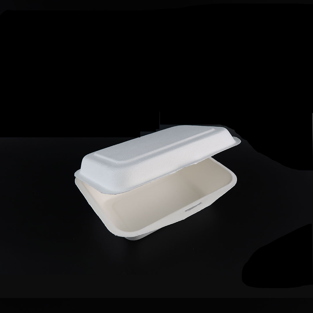 B001—7×5-inch-Bagasse-Hinged-Container-2