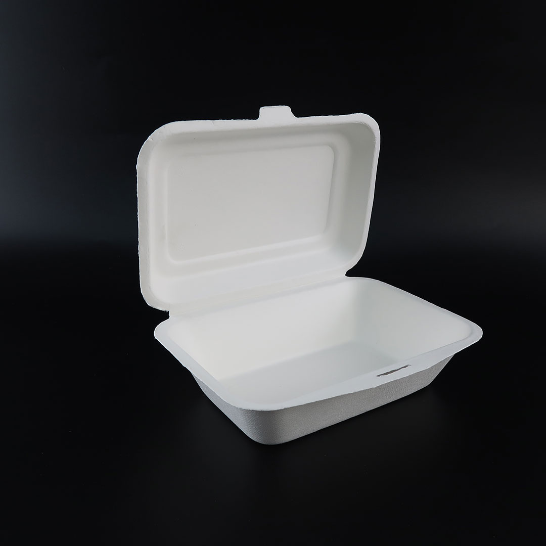 B001—7×5-inch-Bagasse-Hinged-Container-3