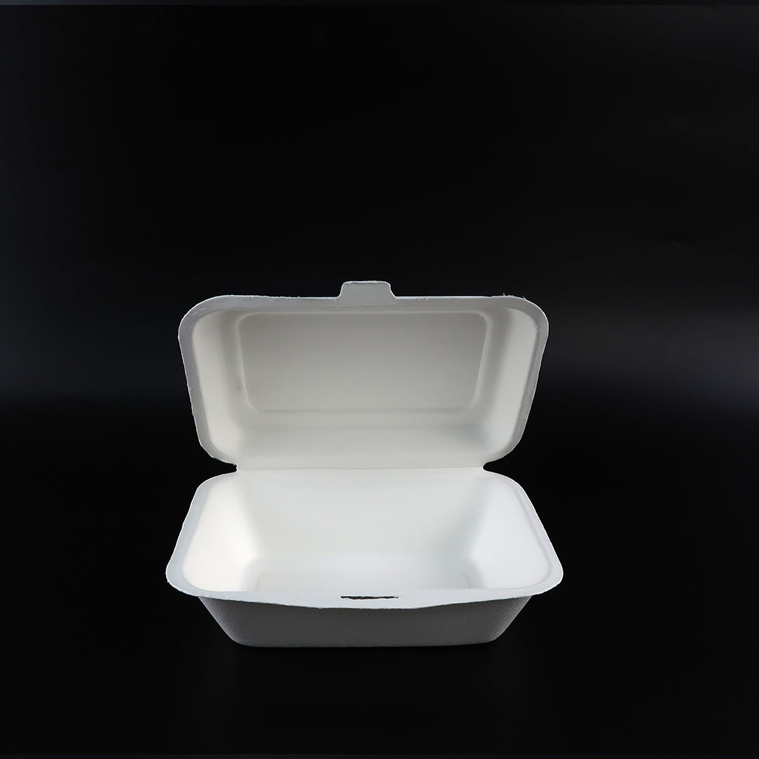 B001—7×5-inch-Bagasse-Hinged-Container-4