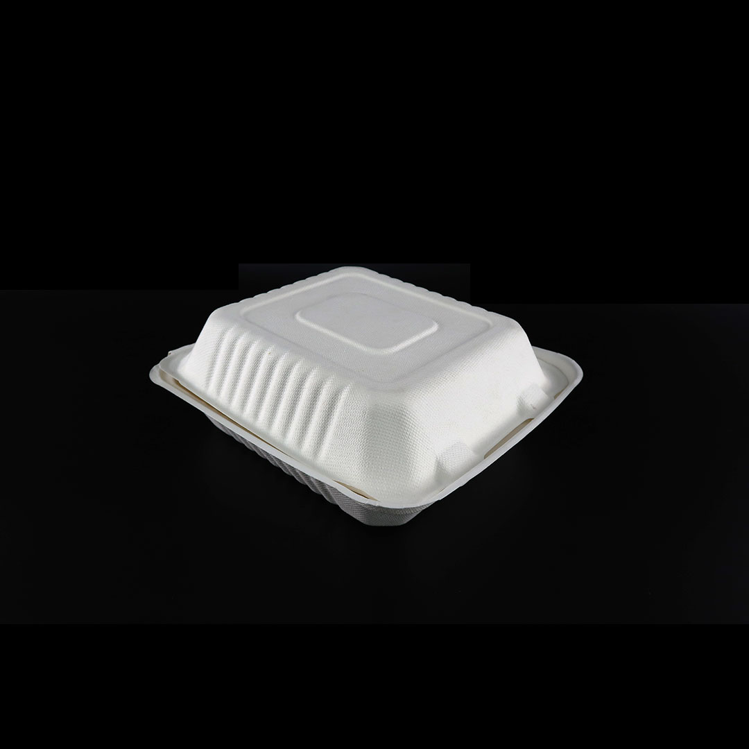 B036—8×8-inch-Bagasse-Container-2