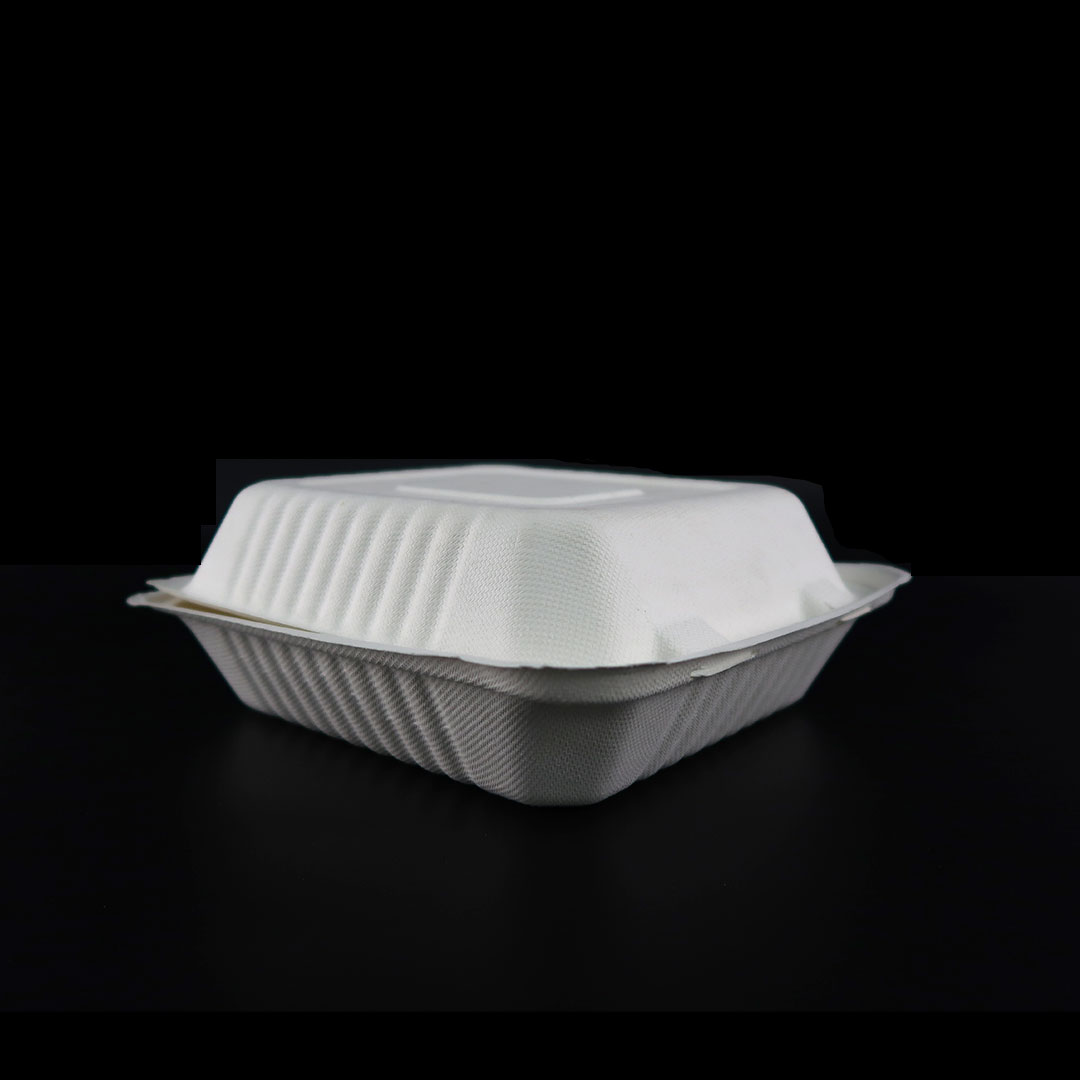 B036—8×8-inch-Bagasse-Container-3