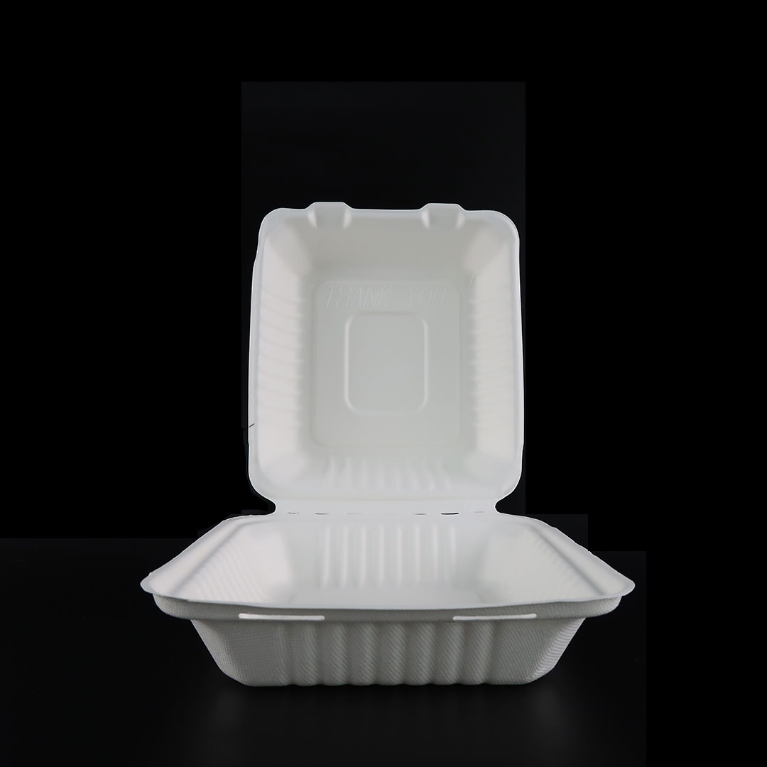 B036—8×8-inch-Bagasse-Container