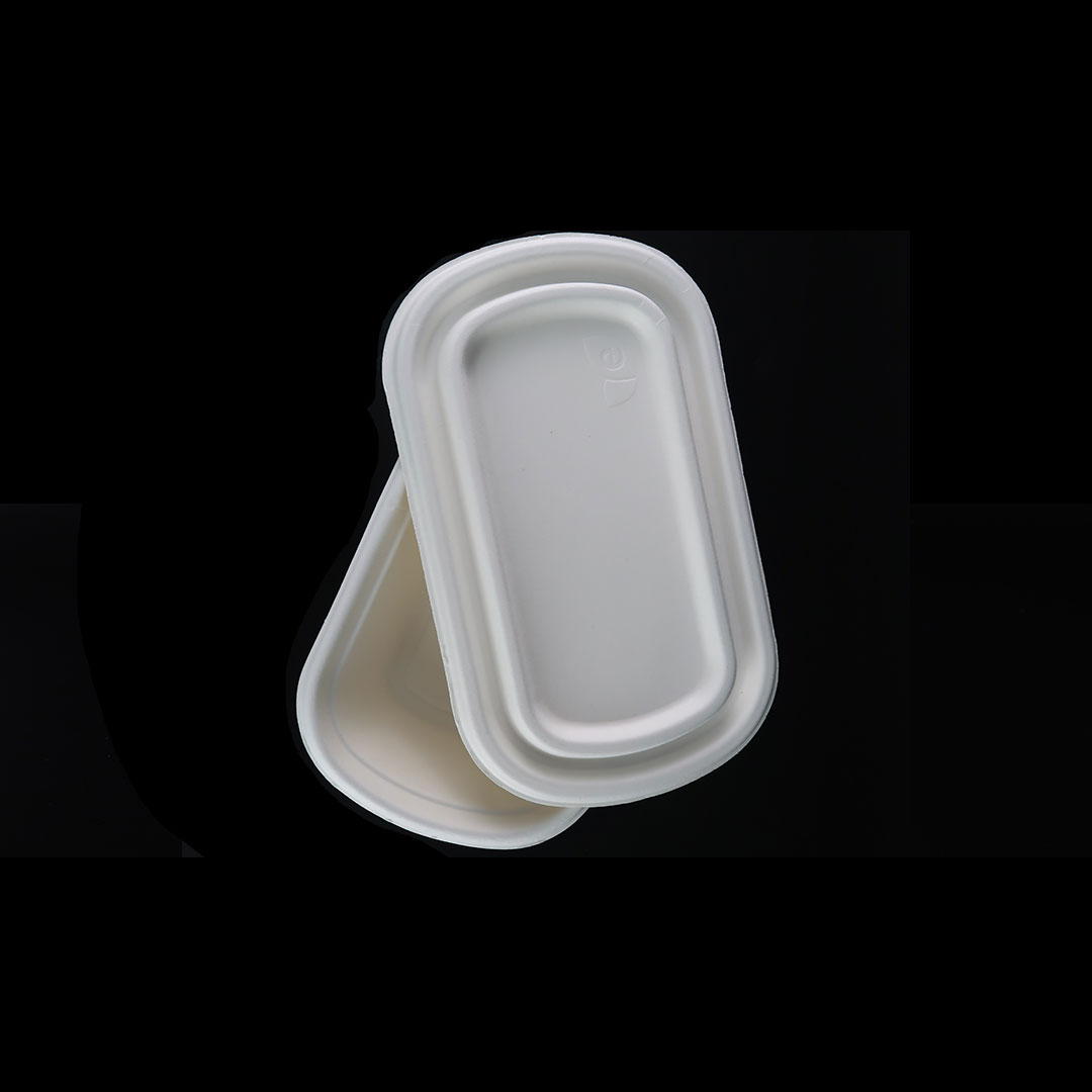 B046—800ml-Bagasse-Container-3
