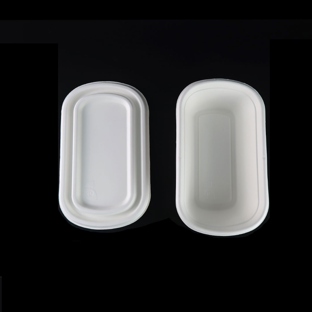 B046—800ml-Bagasse-Container-5