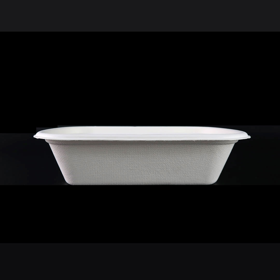 B046—800ml-Bagasse-Container
