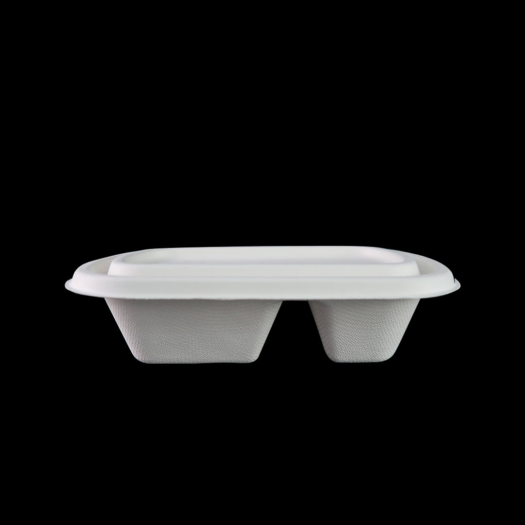 B047—750ml-Bagasse-2-Compartment-Container11